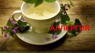 Чай из крапивы. 12 лечебных свойств - Домашний лекарь - выпуск №31