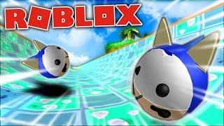 Roblox SUPER SONIC BALL RACE! - Roblox Super Blocky Ball