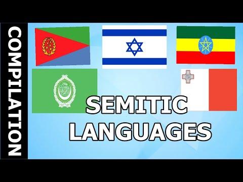 The semitic languages | Compilation