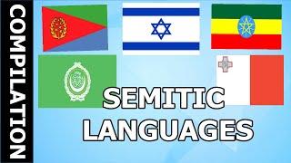 the semitic languages  Compilation   Verbale Mondo
