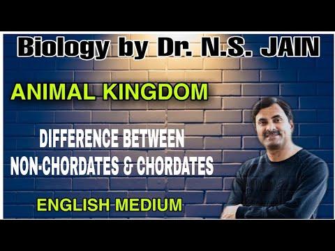 Differences Between Non-Chordates & Chordates (Animal Kingdom) | English Medium