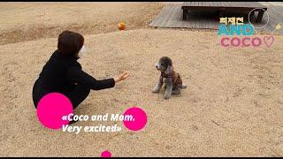 꼬마친구와 장난감. Coco, little friend…