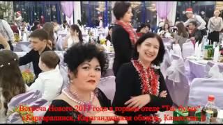 Каркаралинск. Новый год. 2017 год. Горный отель