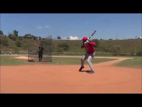 Misael Beltre SS, Switch hitter