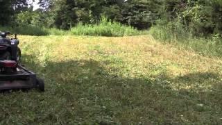 Bushogging with my ATV. (Food Plot part 1)