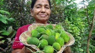 Healthy Village Foods ❤ Cooking Spiny Gourd in my Village by my Mom