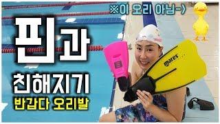 핀 수영 (오리발) 숏핀/롱핀 사용법 : Fin Swi…