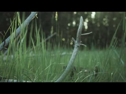 RUSSIA - A Time-Lapse sun 4K