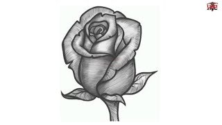 realistic drawings drawing step simple draw rose beginners steps flowers flower easy pencil tutorials paintingvalley ways wikihow sia christopher