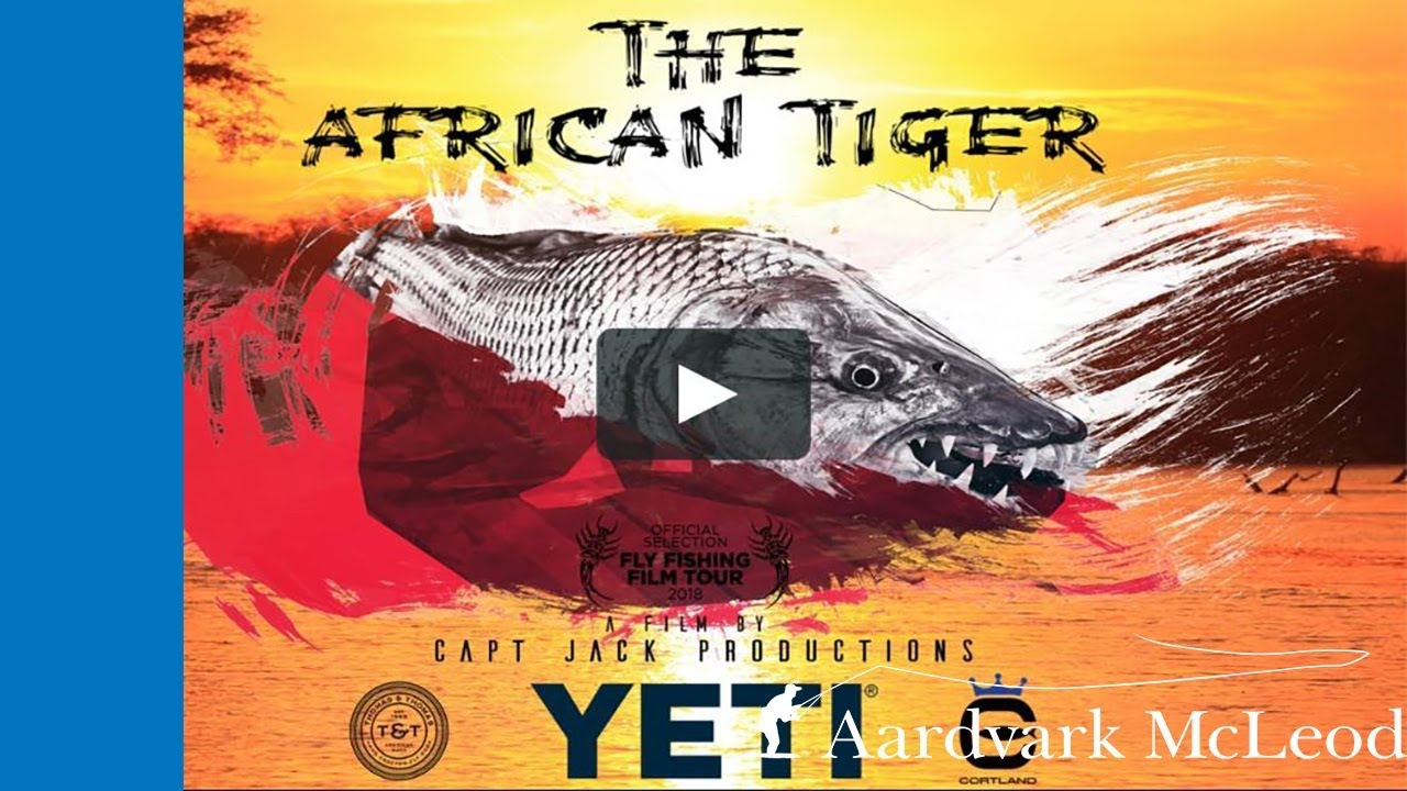 The African Tiger Trailer - Tanzanian tigerfish on the fly