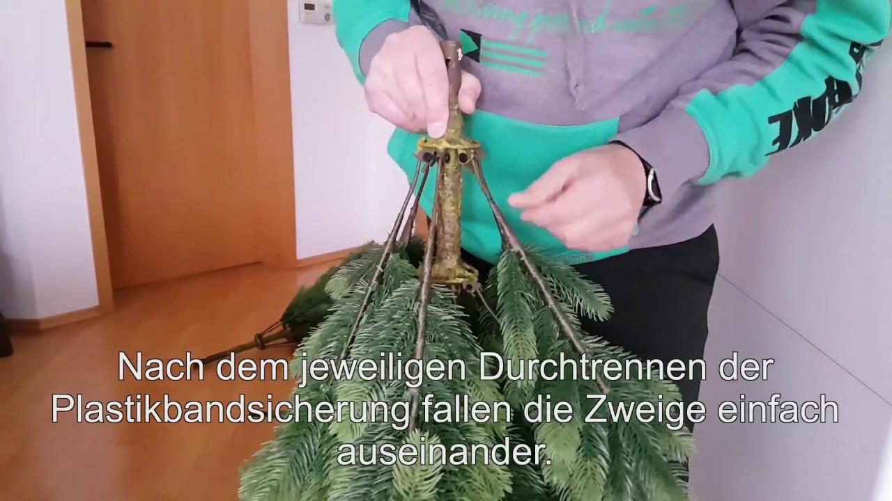 Kunststoff weihnachtsbaum aldi
