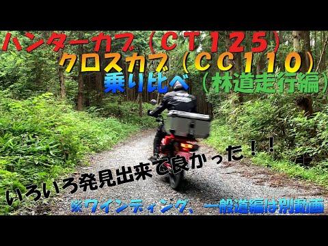 ハンターカブ(CT125)とクロスカブ(CC110)を乗り比べてみました(林道走行編)初心者林道走行動画です。(納車後初林道)JA55