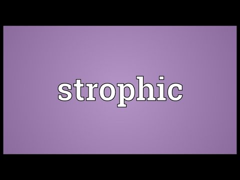 Header of strophic