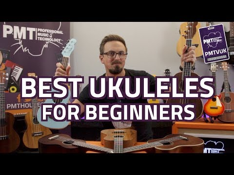 Top 10 Best Ukuleles For Beginners