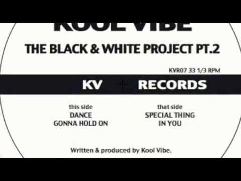 Kool Vibe - The Black & White Project Pt. 2 - Preview