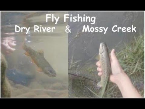 Fly Fishing The Dry River And Mossy Creek Virginia