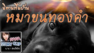 นิทานพื้นบ้าน-เรื่อง-หมาขนทองคำ-nana-story-clip