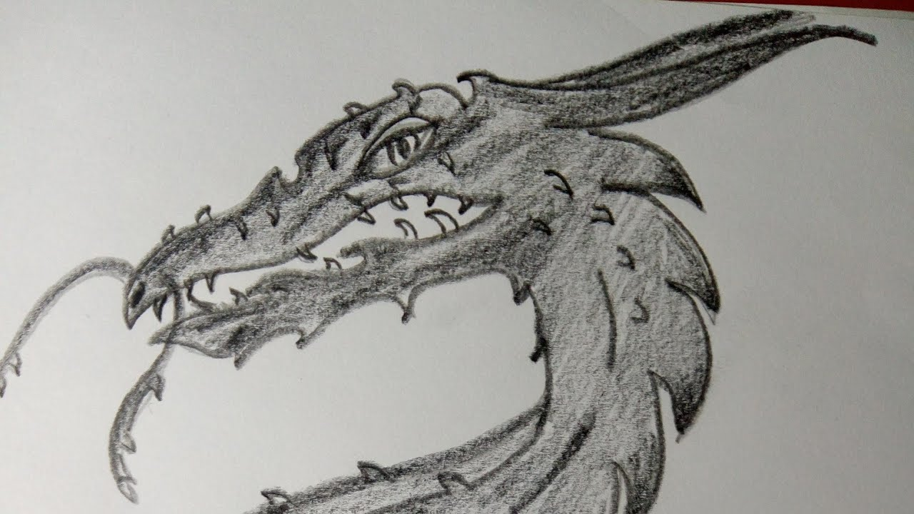 Drawing a dragon/how to draw a dragon/ pencil drawing ...
