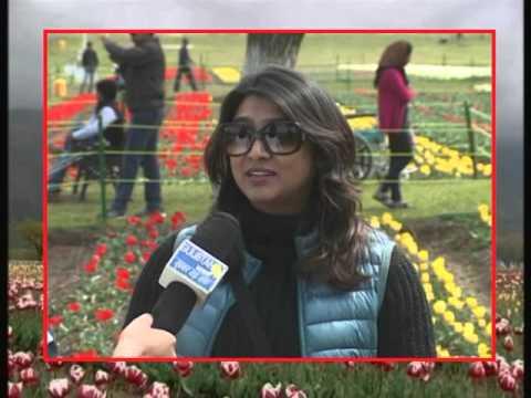 irfan fazil tv host
