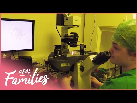What&39;s It Like To Work At An IVF Clinic? | The Fertility Clinic | Real Families with Foxy Games