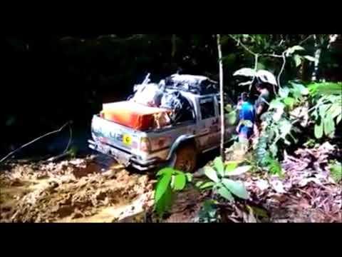 Borneo Safari Kimanis 2017