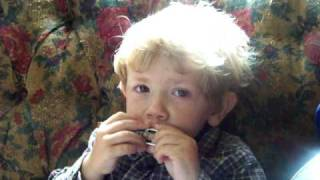 Little Willers playing the harmonica