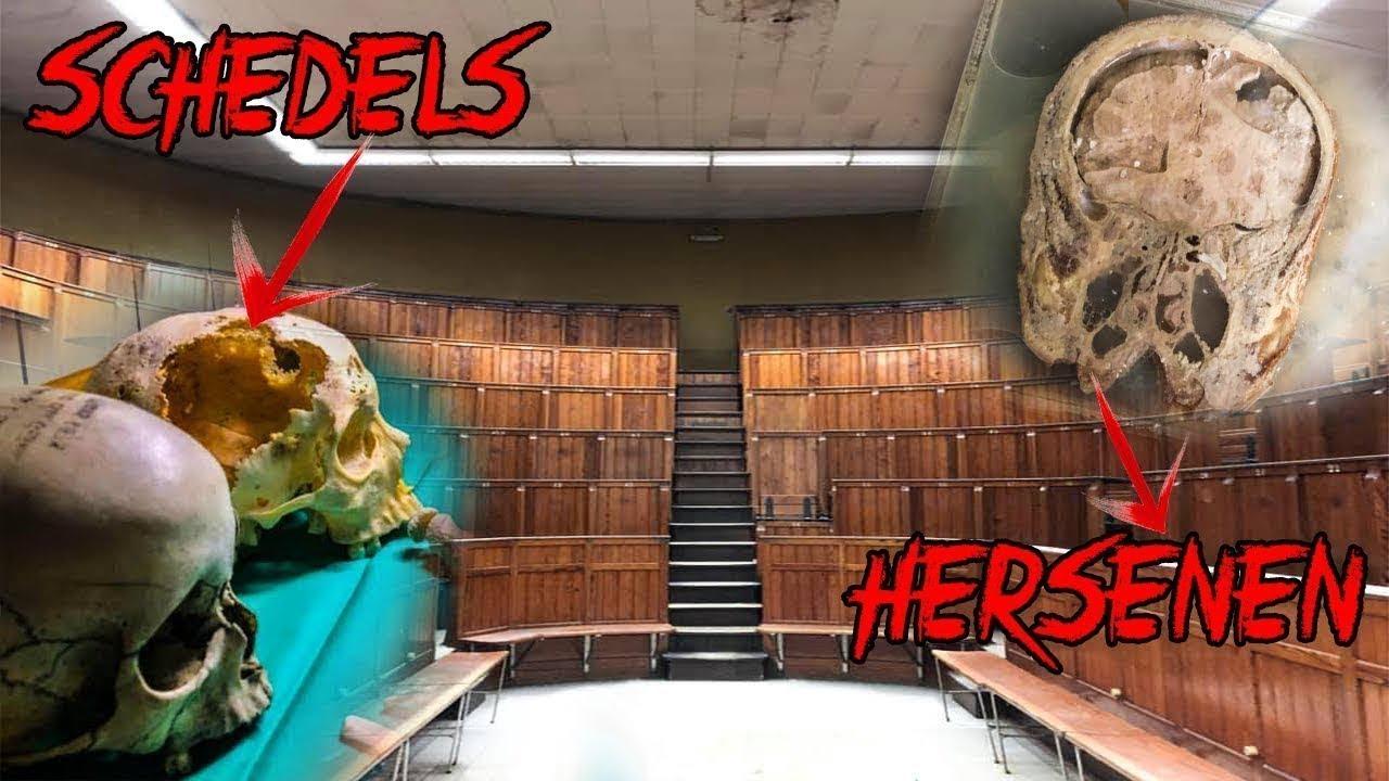 [18+] MENSEN BOTTEN EN HERSENEN GEVONDEN in VERLATEN MEDISCHE SCHOOL !