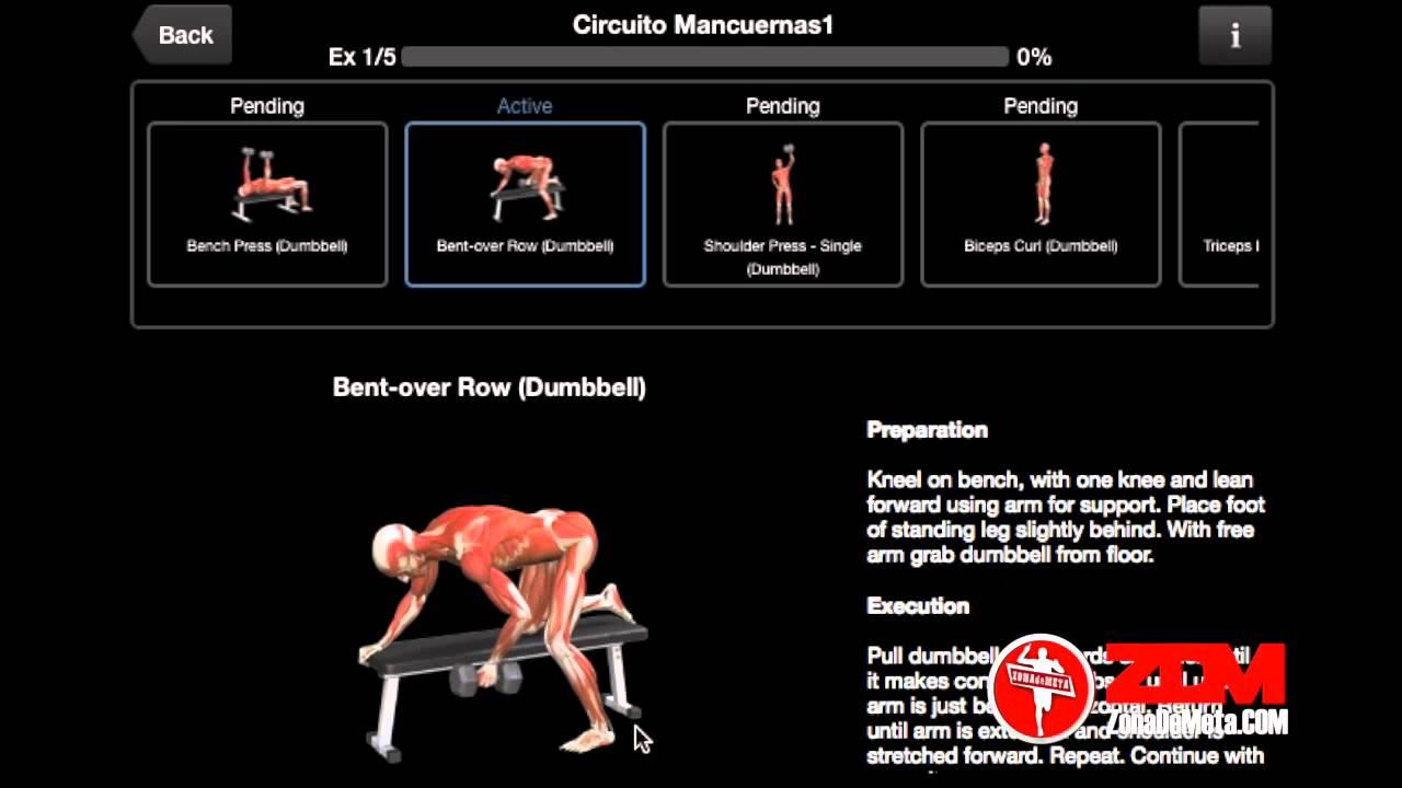 Circuito Gimnasio : Sistemas de entrenamiento circuito con mancuernas para