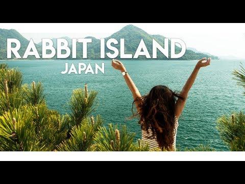 THE BEAUTIFUL RABBIT ISLAND OF JAPAN