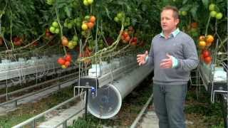 Repeat youtube video Greenhouse commercial Nature Fresh Farms Leamington