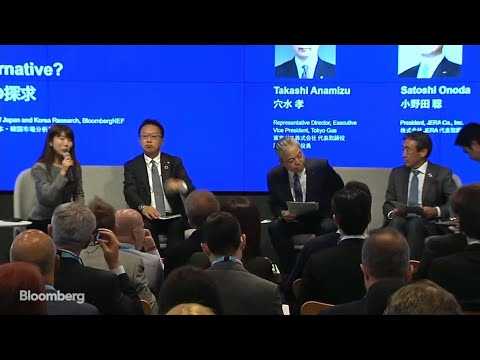 The Future of Renewable Energy in Japan: Panel