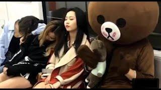 Funny Brown Bear China