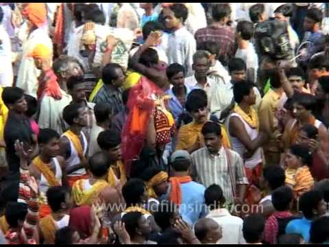 Devotees chanting and dancing on Jagannath