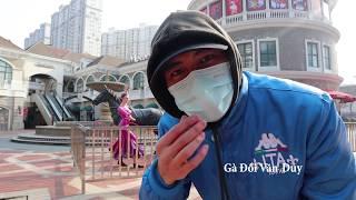 Gà Đồi Văn Duy và những hình ảnh về Thành phố Vũ Hán Wuhan city VIRUS CORONA