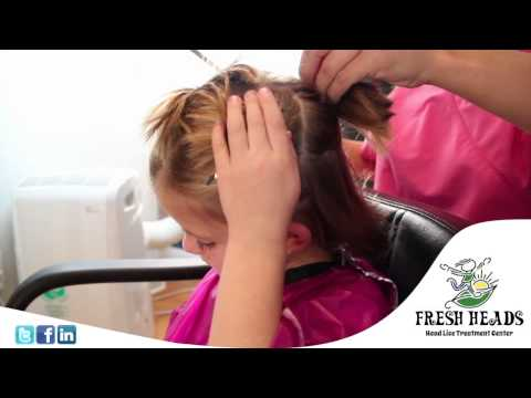 Fresh Heads Lice Removal - About AirAllé