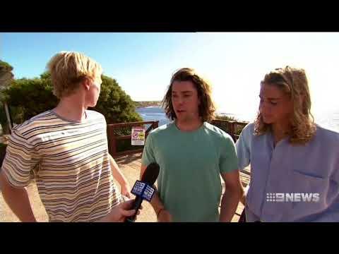 Gracetown Shark | 9 News Perth