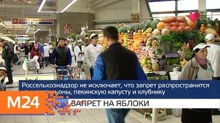"""Москва и мир"": новая школа и запрет на яблоки - Москва 24"