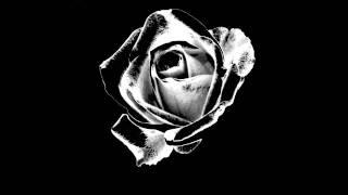 Ayreon-Waking Dreams