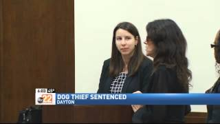 Woman Who Stole Service Dog Sentenced To 50