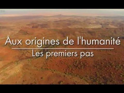 Aux origines de l'humanité - Les Premiers Pas [1/3]