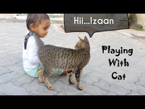 Playing with cat   Izaan playing with his pet   Kids vedio   Funny video for kids
