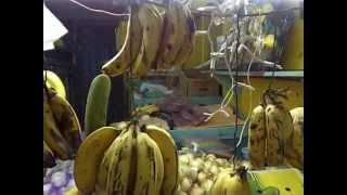 Farmer's Market in Puerto Rico