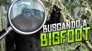 BUSCANDO A PIE GRANDE | Finding Bigfoot