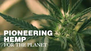 Pioneering Hemp for the Planet
