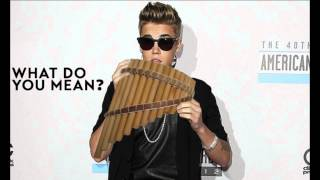 What Do You Mean - Panpipe Cover