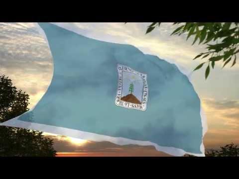 Bandera del Estado de Morelos [Propuesta por MGO]