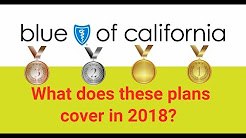 What does the Blue Shield  individual health plans cover in 2018 (bronze, silver, gold and platinum)