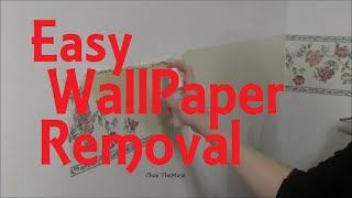 Wallpaper Removal Quick N Easy