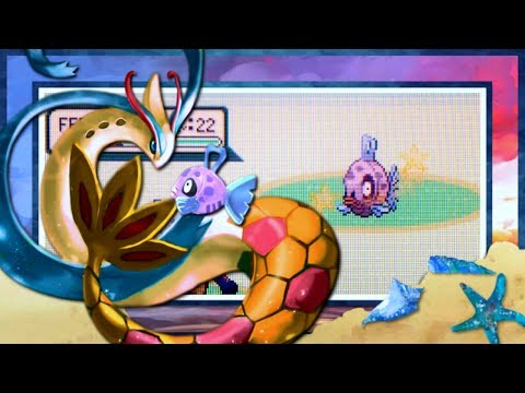 [FTQ #4] LIVE!! Shiny Feebas in Sapphire after 18,133 FEs [+ Two Live Karps and Milotic Evolution]