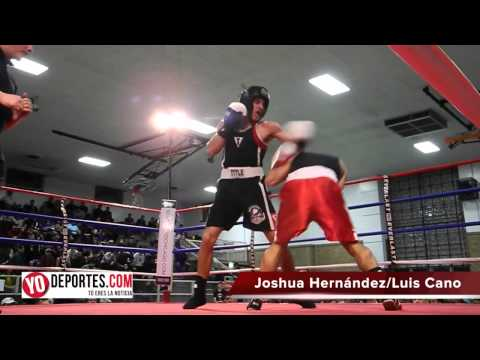 Joshua Hernandez vs. Luis Cano Chicago Golden Gloves 2015
